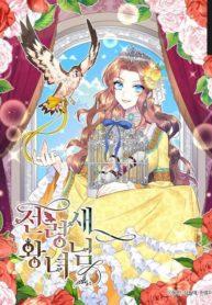Cavier Falcon Princess Manga