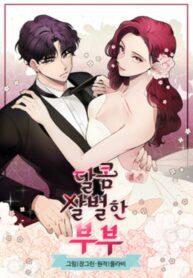 A Bittersweet Couple Manga