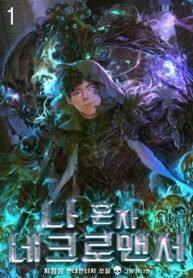 The Lone Necromancer Manga